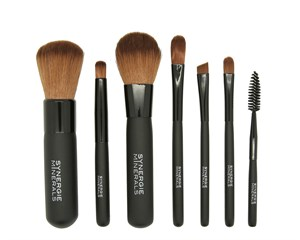 SynergieMinerals Travel Essential Brush Kit